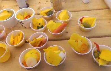 Espaço Mwangolé – ep8 – Música e Toronto ChowFest Fruit Festival